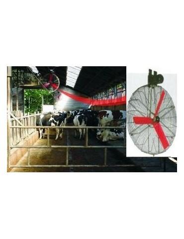 Ventilator ferme vaci